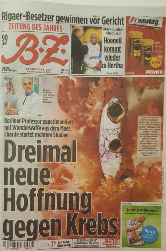 BZ_Dreimal neue Hoffnung_20160203-Cover